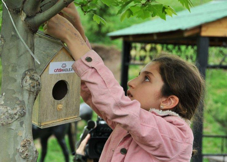 Keçiörenli çocuklar elleriyle kuşlara yuva yaptılar