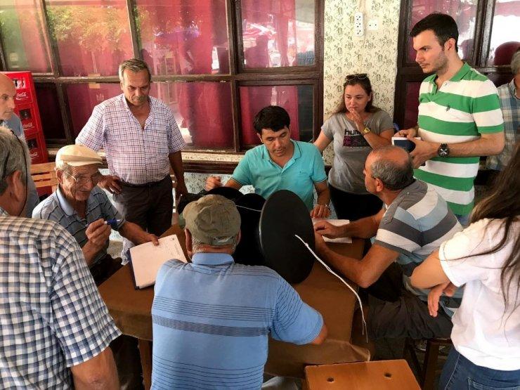 Büyükşehir Belediyesi, vatandaşları kırmızı palmiye böceğine karşı uyardı