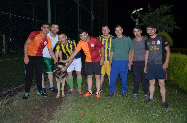 Köpeğin futbol tutkusu