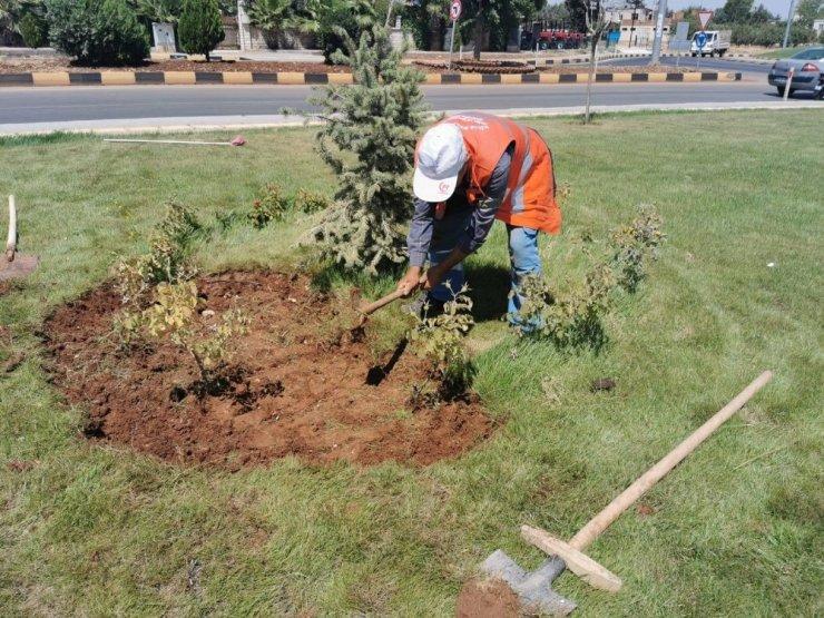 Kilis'te yeşillendirme çalışmaları