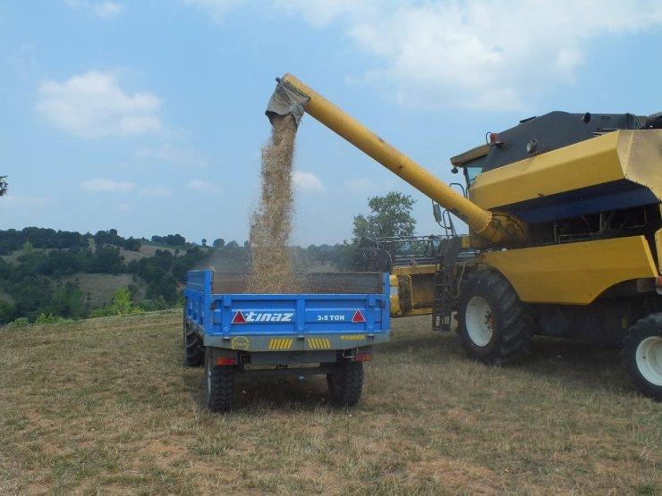Pazaryeri'nde buğday arpa hasadı başladı