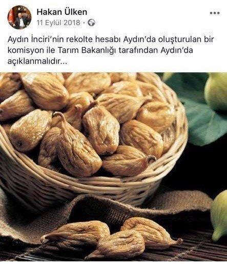 """""""İncir rekolte hesabı artık incirin memleketi Aydın'da yapılacak"""""""