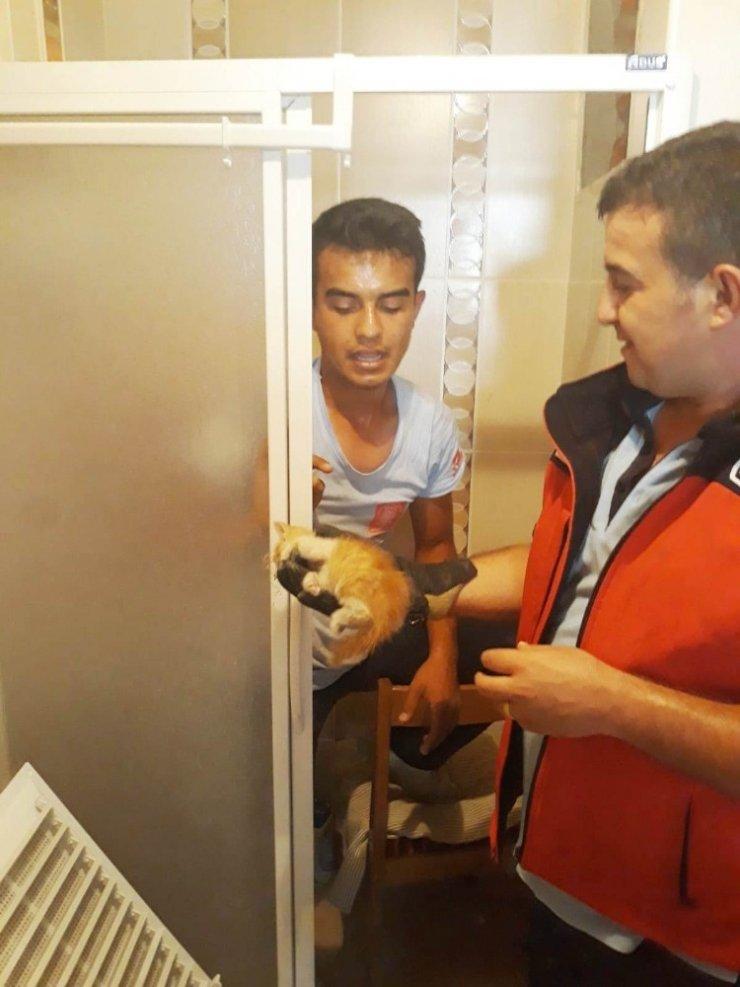 Balıkesir'de havalandırma boşluğuna düşen kediyi itfaiye kurtardı