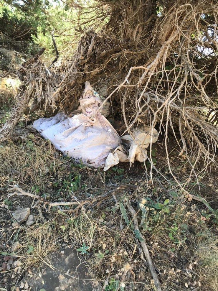 Siirt'te ağaçların arasına gizlenmiş PKK'ya ait mühimmat ele geçirildi