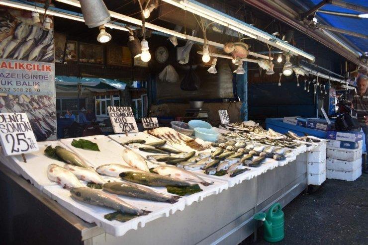 Balıkçıların yeni sezonda umudu palamut