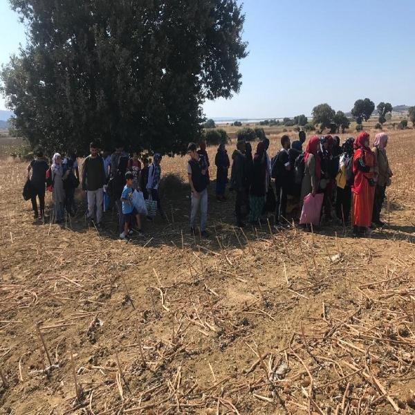 Çanakkale'de 353 kaçak göçmen ve 8 organizatör yakalandı