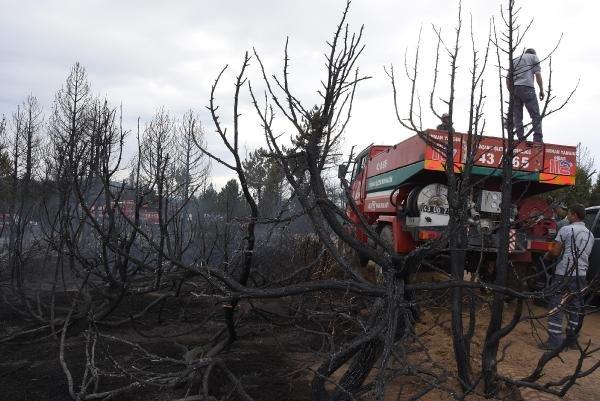 Kütahya'da 250 bin fidan dikildi, 3 hektar ormanlık alan yandı