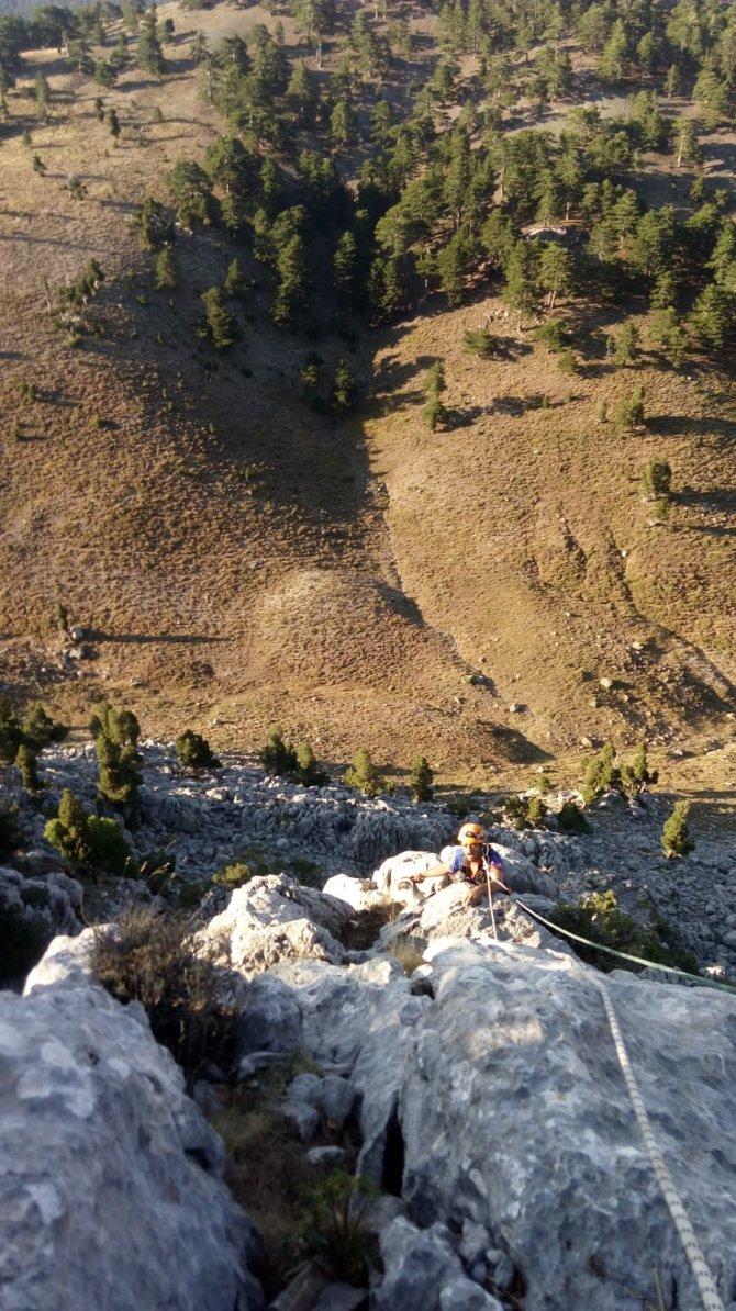 afad-ekipleri-kayaliklarda-mahsur-kalan-4-keciyi-kurtardu-2.jpg