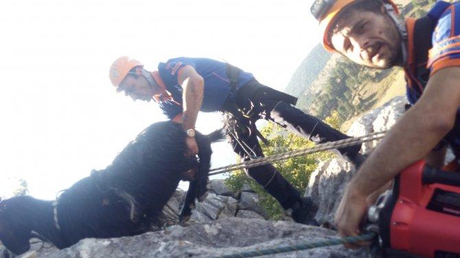 afad-ekipleri-kayaliklarda-mahsur-kalan-4-keciyi-kurtardu-3.jpg