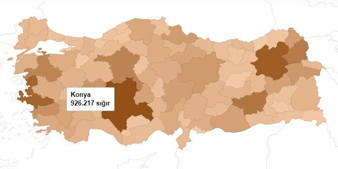 harita-008.jpg