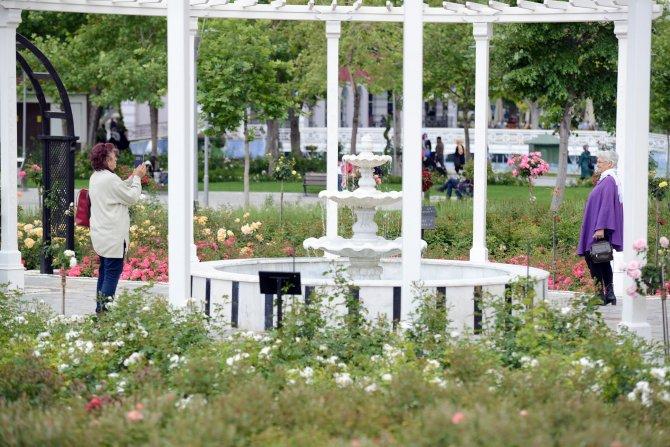 kulturpark-gulbahce'de-gullerin-ahengi-3.jpg